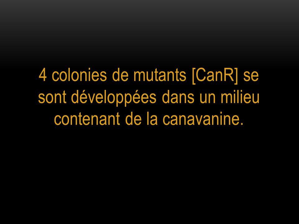 Quelle est la fréquence spontanée d'apparition de mutants [CanR] ?