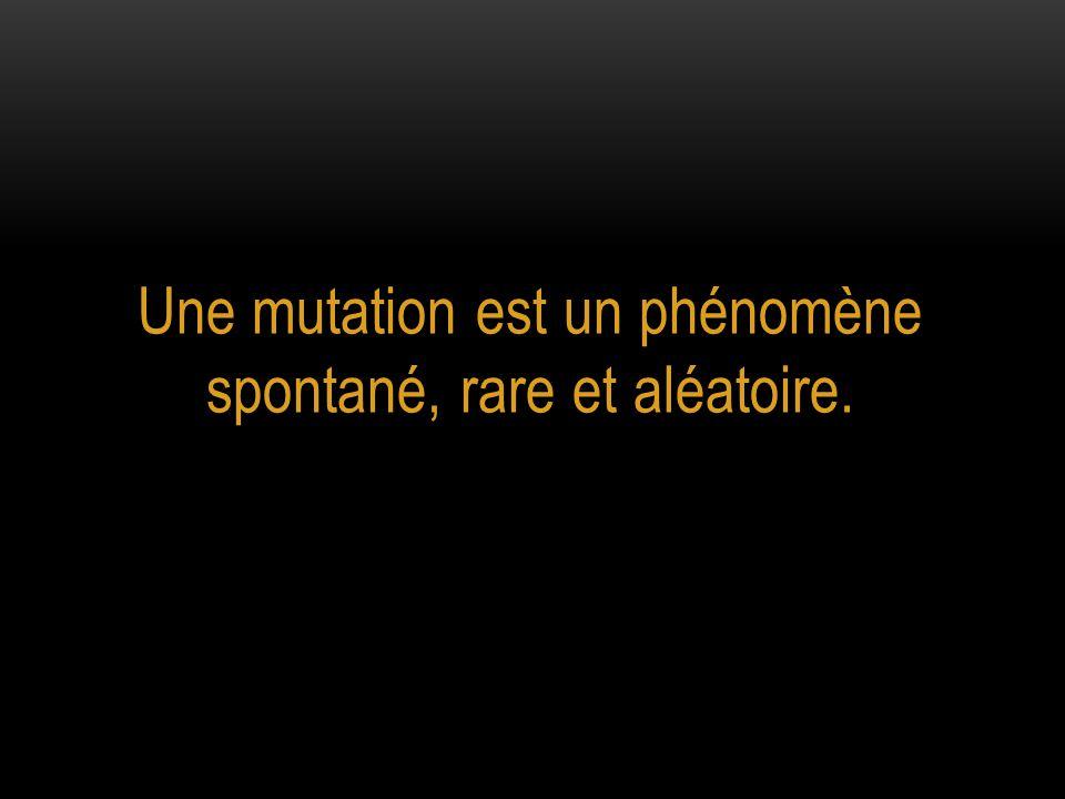 Les différents types de mutations