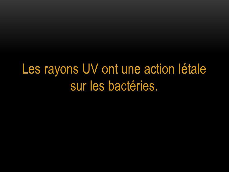 Quelle est la fréquence d'apparition des mutants [CanR] dans la culture exposée aux rayons UV ?