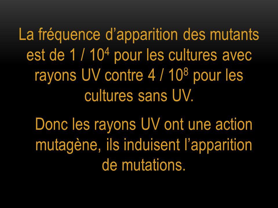D'autres agents sont mutagènes : Les rayons X Les rayons gamma Le benzopyrène : une cigarette de tabac produit de 18 à 50 ng de benzopyrène Etc.