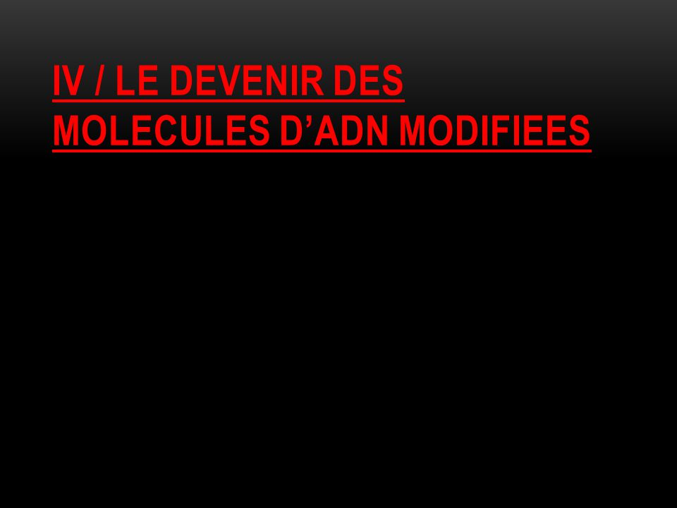 IV / LE DEVENIR DES MOLECULES D'ADN MODIFIEES