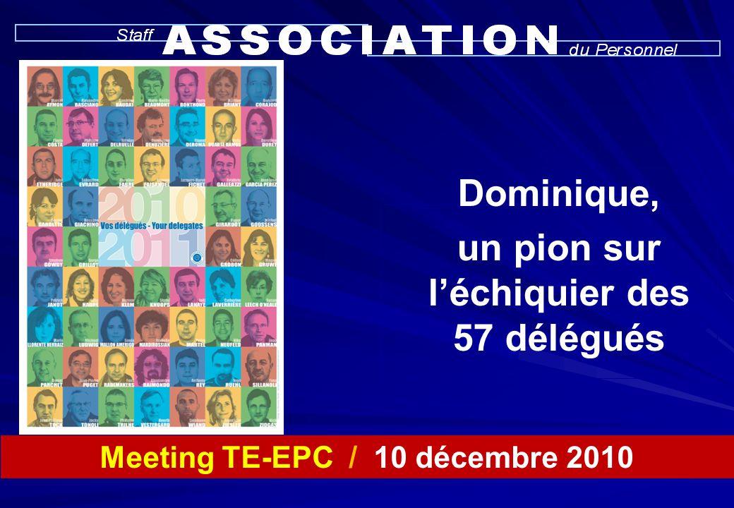 Meeting TE-EPC / 10 décembre 2010 Dominique, un pion sur l'échiquier des 57 délégués