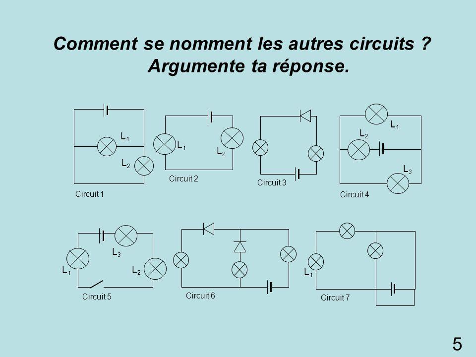 Comment se nomment les autres circuits ? Argumente ta réponse. L1L1 L2L2 L3L3 Circuit 5 L1L1 L2L2 L1L1 Circuit 1 L1L1 L2L2 Circuit 2 L3L3 L1L1 D1D1 Ci