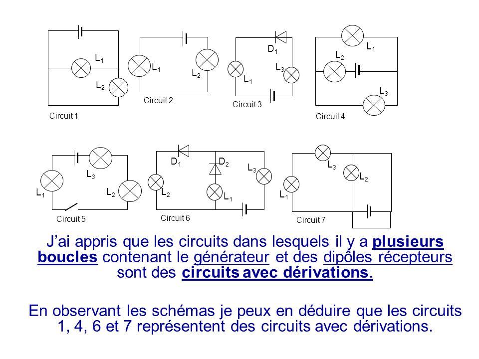 J'ai appris que les circuits dans lesquels il y a plusieurs boucles contenant le générateur et des dipôles récepteurs sont des circuits avec dérivatio