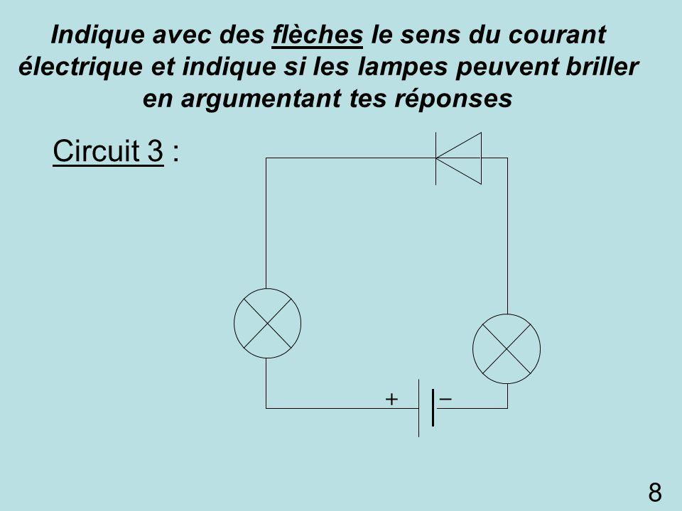 Circuit 3 : 8 Indique avec des flèches le sens du courant électrique et indique si les lampes peuvent briller en argumentant tes réponses L3L3 L1L1 D1