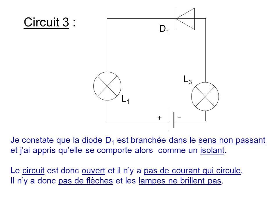 Circuit 3 : Je constate que la diode D 1 est branchée dans le sens non passant et j'ai appris qu'elle se comporte alors comme un isolant. Le circuit e