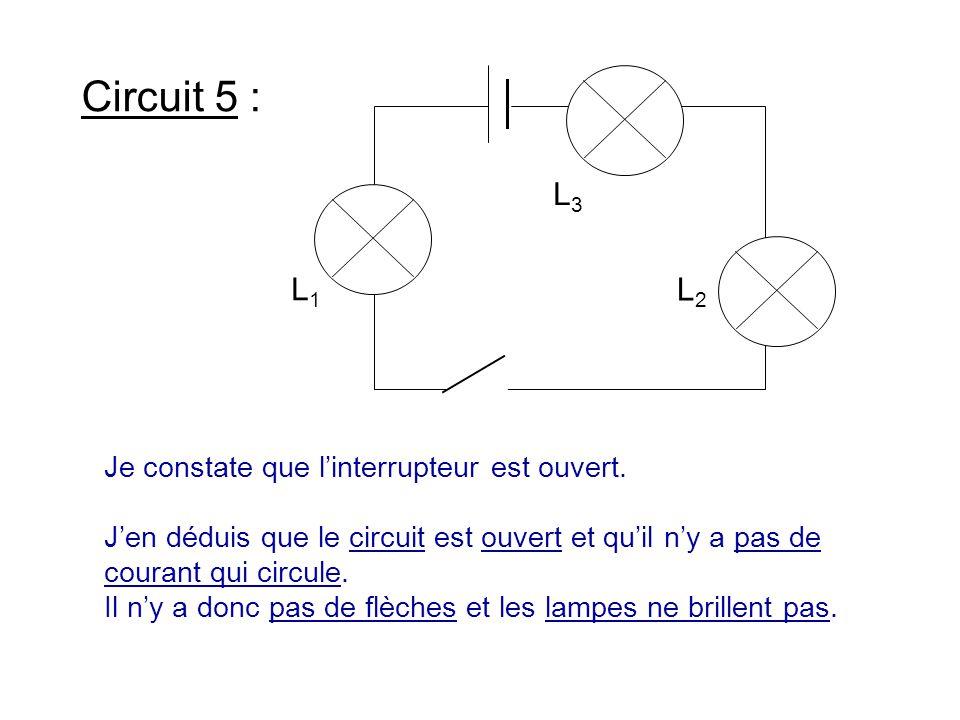 Circuit 5 : Je constate que l'interrupteur est ouvert. J'en déduis que le circuit est ouvert et qu'il n'y a pas de courant qui circule. Il n'y a donc