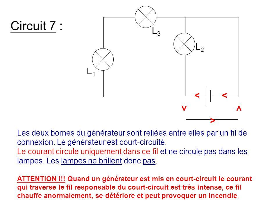 Circuit 7 : Les deux bornes du générateur sont reliées entre elles par un fil de connexion. Le générateur est court-circuité. Le courant circule uniqu