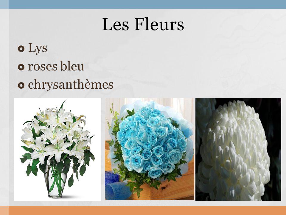  Lys  roses bleu  chrysanthèmes Les Fleurs