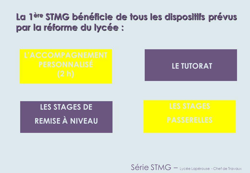 Quatre spécialités en terminale S.T.M.G.