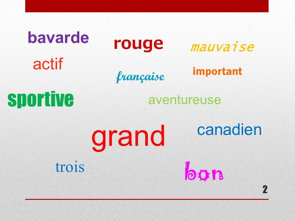 2 rouge grand important actif aventureuse française bavarde trois canadien sportive bon mauvaise