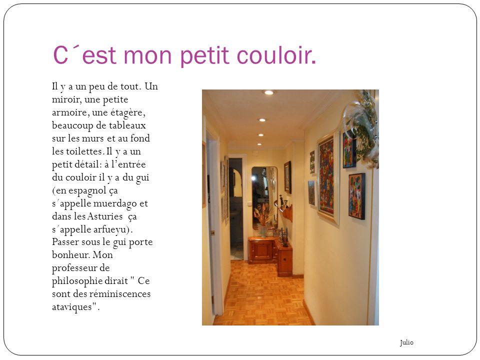 C´est mon petit couloir. Il y a un peu de tout. Un miroir, une petite armoire, une étagère, beaucoup de tableaux sur les murs et au fond les toilettes