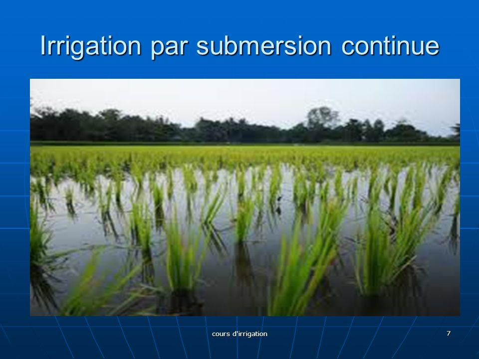 Irrigation par submersion continue 7 cours d'irrigation