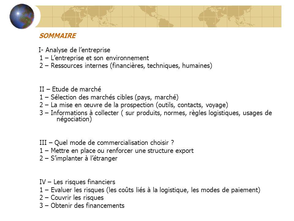 I – ANALYSE DE L'ENTREPRISE 1 – L'entreprise et son environnement a)Développement réussi sur le marché domestique b)Conquête de nouveaux marchés géographiques