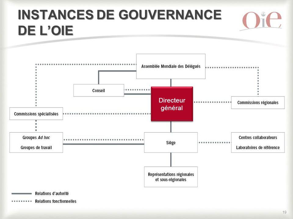 19 INSTANCES DE GOUVERNANCE DE L'OIE Directeur général