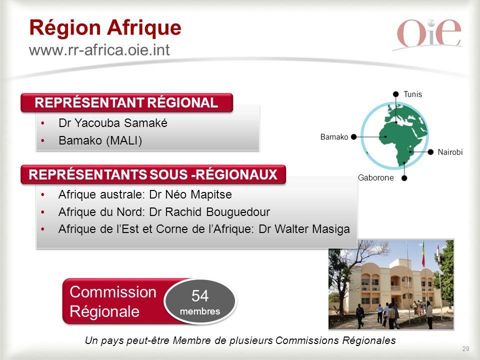 29 Région Afrique www.rr-africa.oie.int Dr Yacouba Samaké Bamako (MALI) Dr Yacouba Samaké Bamako (MALI) REPRÉSENTANT RÉGIONAL Commission Régionale 54 membres 54 membres Un pays peut-être Membre de plusieurs Commissions Régionales Gaborone Afrique australe: Dr Néo Mapitse Afrique du Nord: Dr Rachid Bouguedour Afrique de l'Est et Corne de l'Afrique: Dr Walter Masiga Afrique australe: Dr Néo Mapitse Afrique du Nord: Dr Rachid Bouguedour Afrique de l'Est et Corne de l'Afrique: Dr Walter Masiga REPRÉSENTANTS SOUS -RÉGIONAUX