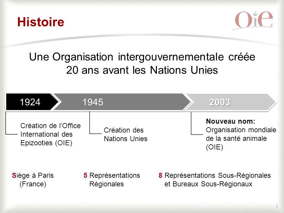 34 INSTANCES DE GOUVERNANCE DE L'OIE Groupes Ad hoc Groupes de travail Groupes Ad hoc Groupes de travail