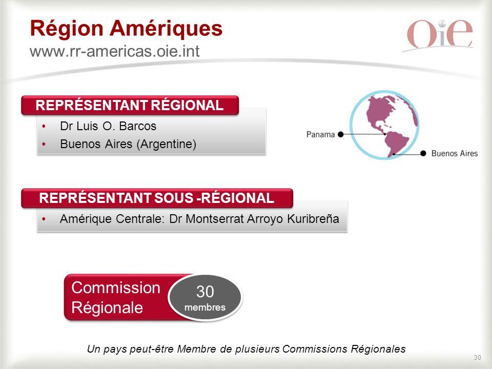30 Région Amériques www.rr-americas.oie.int Dr Luis O.