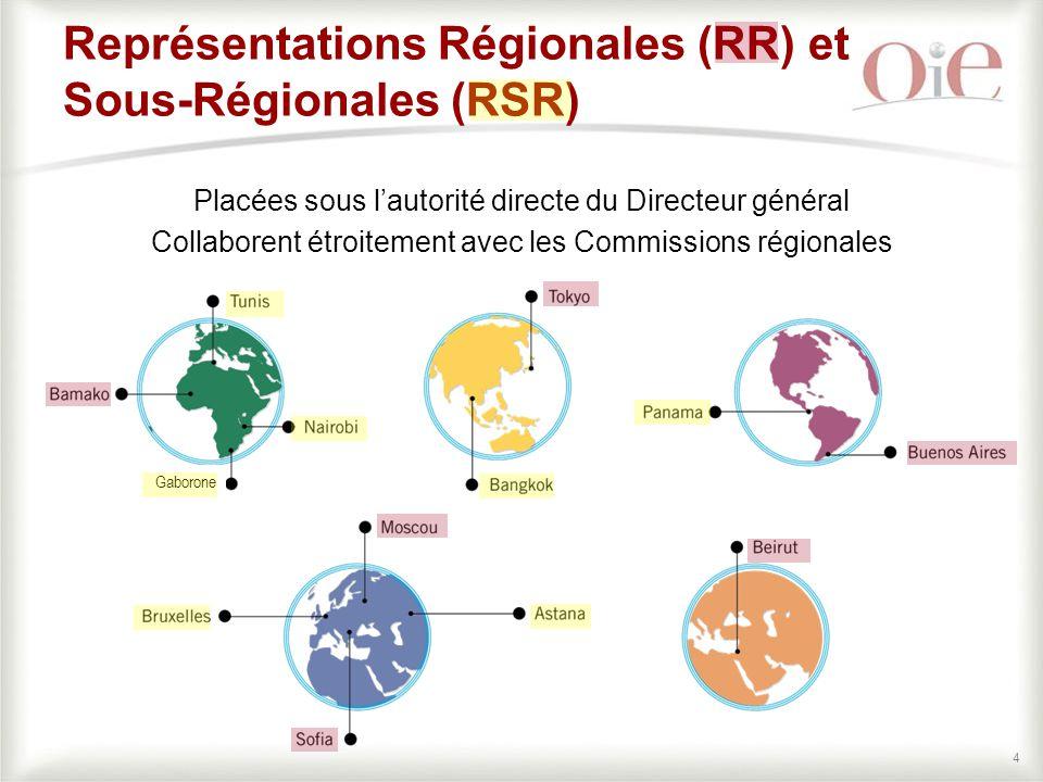 44 Représentations Régionales (RR) et Sous-Régionales (RSR) Placées sous l'autorité directe du Directeur général Collaborent étroitement avec les Commissions régionales Gaborone