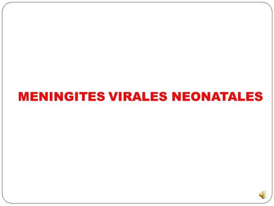 Fièvre Isolée Non systématique CÉFOTAXIME + GENTAMICINE CRP > 20 mg/l Oui Examen normal + CRP < 20 mg/l + NFS normale ! Non avec contrôle CRP à H24 si