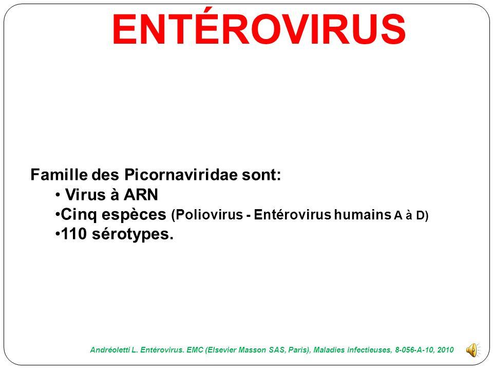 Entérovirus : Première cause virale de méningite 80 % des cas: pathogène est isolé. Ces virus se retrouvent dans le monde entier et atteignent plus pa