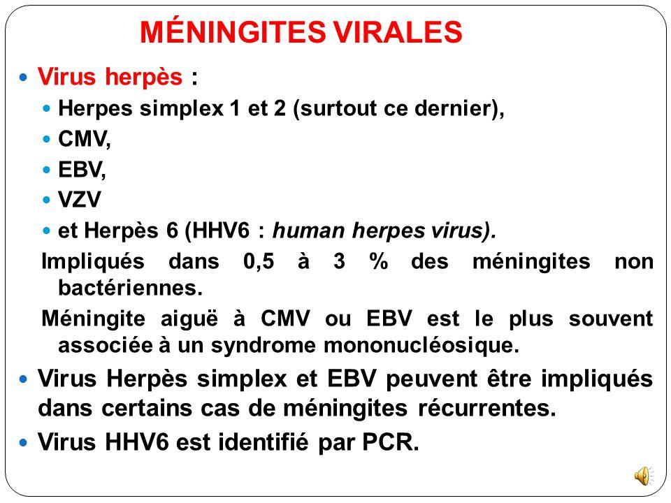 ENTÉROVIRUS Famille des Picornaviridae sont: Virus à ARN Cinq espèces (Poliovirus - Entérovirus humains A à D) 110 sérotypes. Andréoletti L. Entérovir