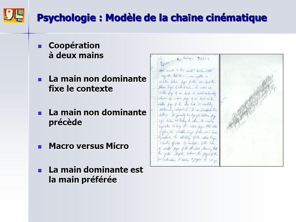 Psychologie : Modèle de la cha î ne cinématique Coopération à deux mains Coopération à deux mains La main non dominante fixe le contexte La main non d