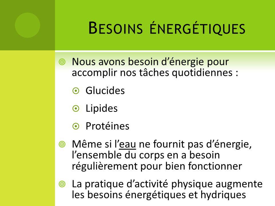 B ESOINS ÉNERGÉTIQUES  Nous avons besoin d'énergie pour accomplir nos tâches quotidiennes :  Glucides  Lipides  Protéines  Même si l'eau ne fourn
