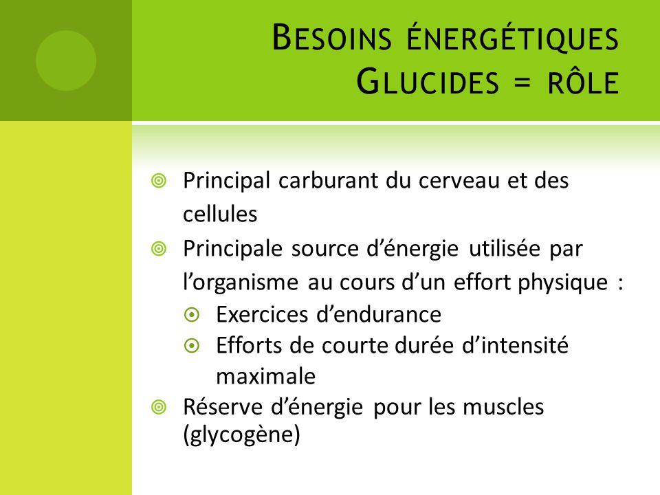B ESOINS ÉNERGÉTIQUES G LUCIDES = RÔLE  Réserve d'énergie pour les muscles (glycogène)  Principal carburant du cerveau et des cellules  Principale