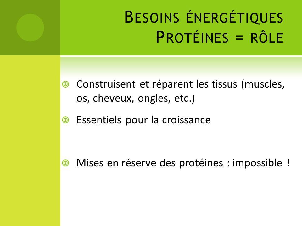 B ESOINS ÉNERGÉTIQUES P ROTÉINES = RÔLE  Construisent et réparent les tissus (muscles, os, cheveux, ongles, etc.)  Essentiels pour la croissance  M
