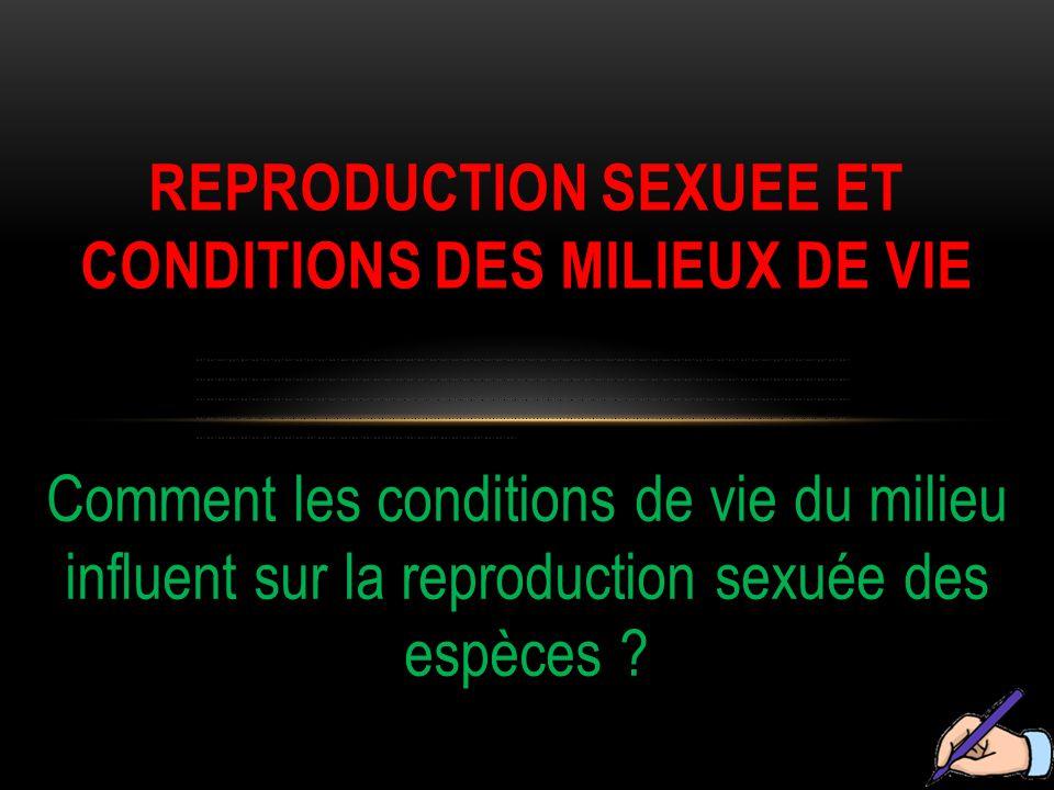 Comment les conditions de vie du milieu influent sur la reproduction sexuée des espèces ? REPRODUCTION SEXUEE ET CONDITIONS DES MILIEUX DE VIE