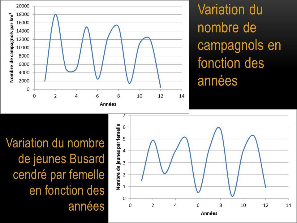 Variation du nombre de campagnols en fonction des années Variation du nombre de jeunes Busard cendré par femelle en fonction des années