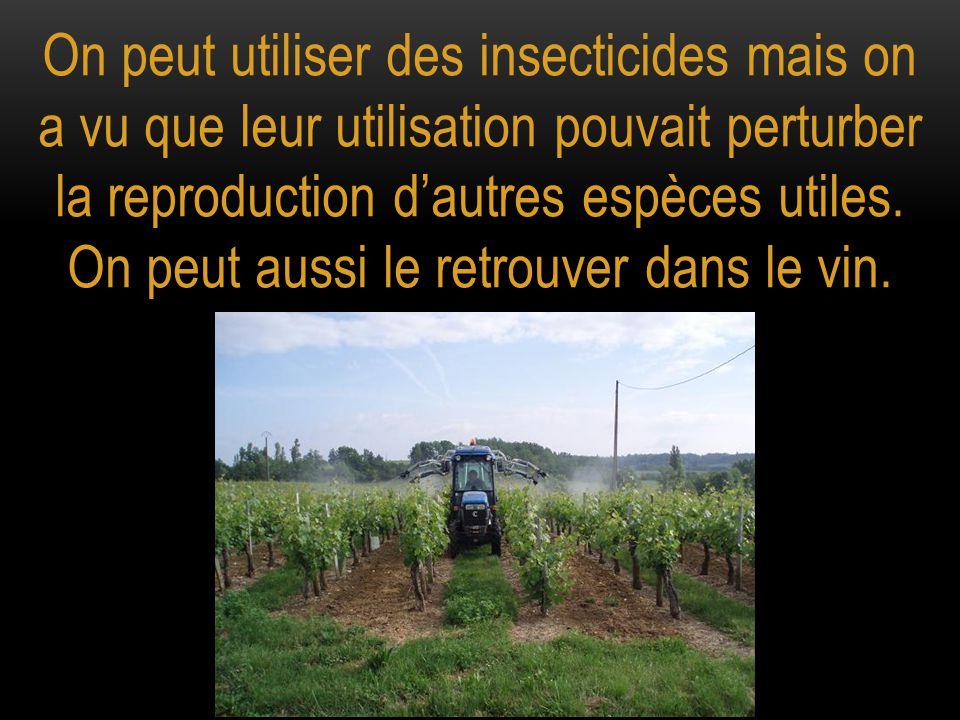 On peut utiliser des insecticides mais on a vu que leur utilisation pouvait perturber la reproduction d'autres espèces utiles. On peut aussi le retrou