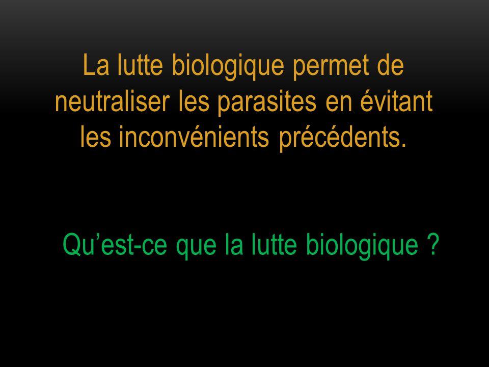 La lutte biologique permet de neutraliser les parasites en évitant les inconvénients précédents. Qu'est-ce que la lutte biologique ?