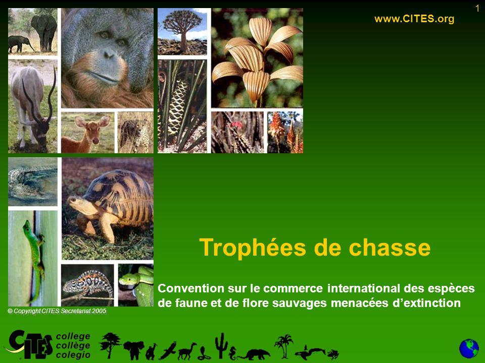 22 Résumé Espèces de l Annexe I –Trophées de chasse d'espèces avec quota approuvé par la CoP (mais aussi spécimens vivants pour les importations non commerciales de certaines espèces): –la résolution Conf.