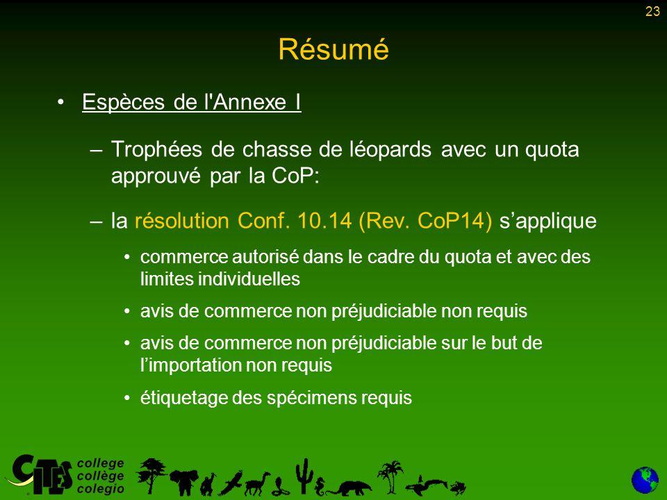 23 Résumé Espèces de l Annexe I –Trophées de chasse de léopards avec un quota approuvé par la CoP: –la résolution Conf.