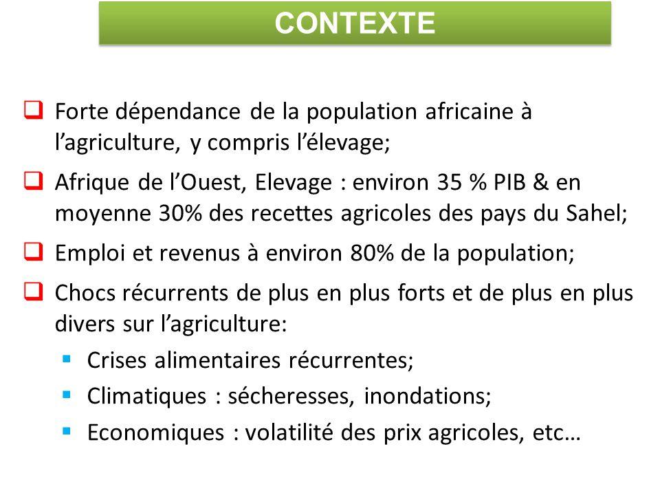  Forte dépendance de la population africaine à l'agriculture, y compris l'élevage;  Afrique de l'Ouest, Elevage : environ 35 % PIB & en moyenne 30% des recettes agricoles des pays du Sahel;  Emploi et revenus à environ 80% de la population;  Chocs récurrents de plus en plus forts et de plus en plus divers sur l'agriculture:  Crises alimentaires récurrentes;  Climatiques : sécheresses, inondations;  Economiques : volatilité des prix agricoles, etc… CONTEXTE