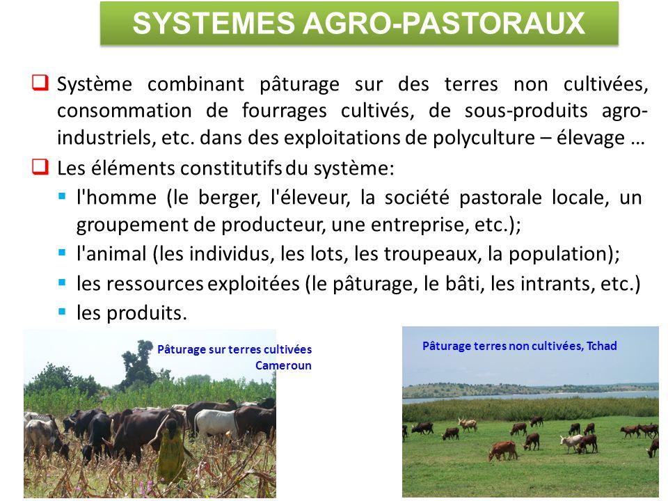  Système combinant pâturage sur des terres non cultivées, consommation de fourrages cultivés, de sous-produits agro- industriels, etc. dans des explo