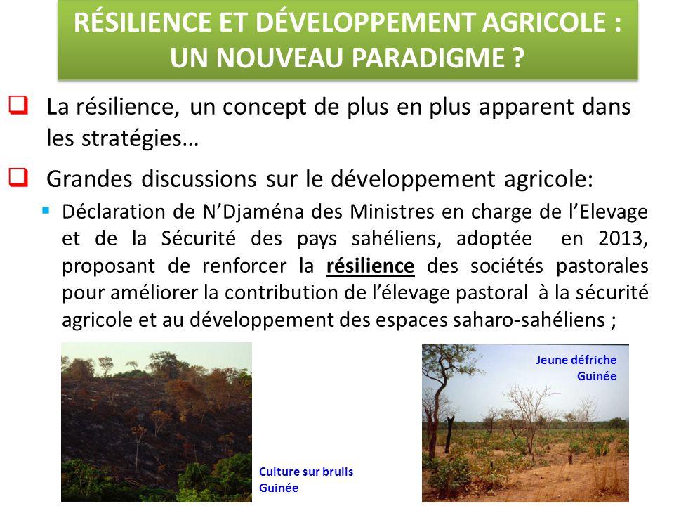  La résilience, un concept de plus en plus apparent dans les stratégies…  Grandes discussions sur le développement agricole:  Déclaration de N'Djaména des Ministres en charge de l'Elevage et de la Sécurité des pays sahéliens, adoptée en 2013, proposant de renforcer la résilience des sociétés pastorales pour améliorer la contribution de l'élevage pastoral à la sécurité agricole et au développement des espaces saharo-sahéliens ; RÉSILIENCE ET DÉVELOPPEMENT AGRICOLE : UN NOUVEAU PARADIGME .