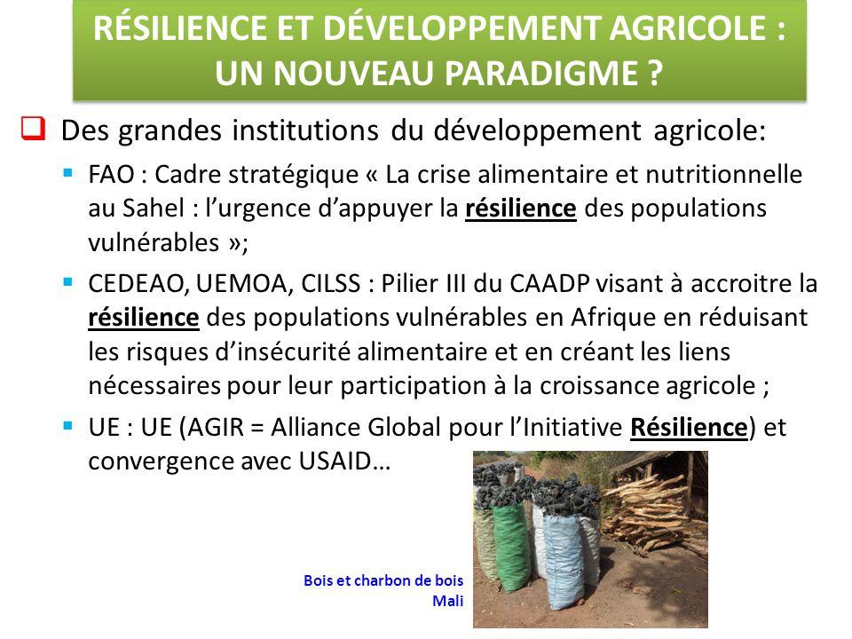  Des grandes institutions du développement agricole:  FAO : Cadre stratégique « La crise alimentaire et nutritionnelle au Sahel : l'urgence d'appuyer la résilience des populations vulnérables »;  CEDEAO, UEMOA, CILSS : Pilier III du CAADP visant à accroitre la résilience des populations vulnérables en Afrique en réduisant les risques d'insécurité alimentaire et en créant les liens nécessaires pour leur participation à la croissance agricole ;  UE : UE (AGIR = Alliance Global pour l'Initiative Résilience) et convergence avec USAID… RÉSILIENCE ET DÉVELOPPEMENT AGRICOLE : UN NOUVEAU PARADIGME .
