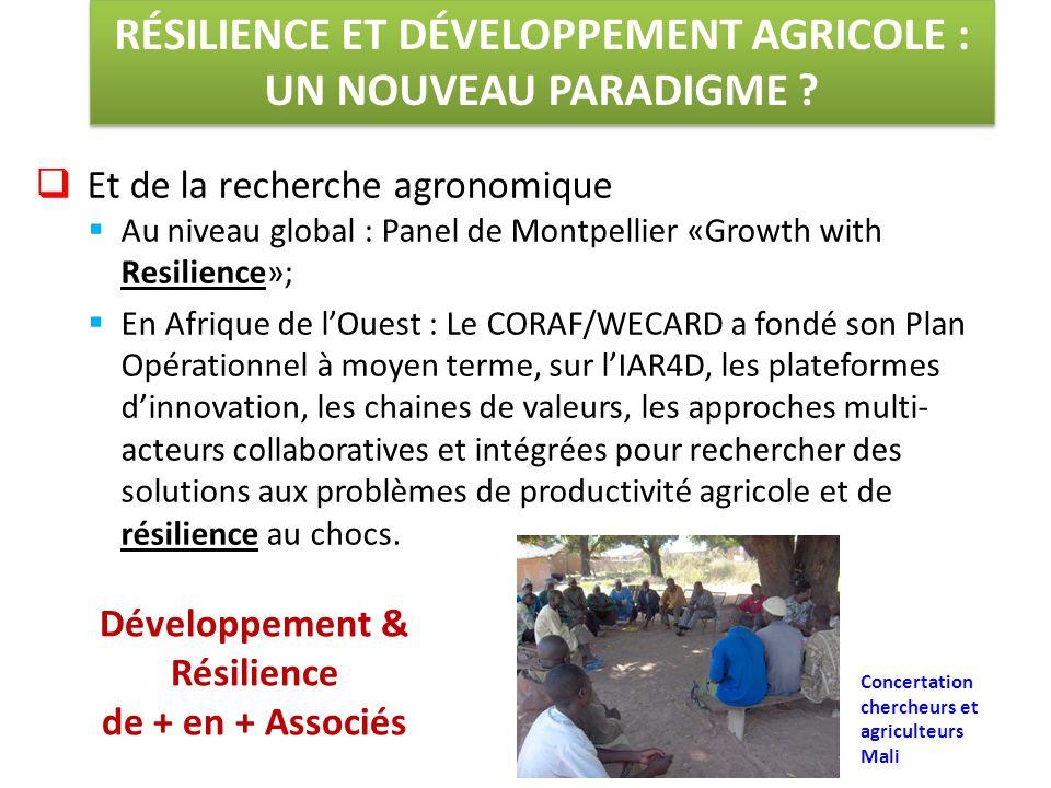  Et de la recherche agronomique  Au niveau global : Panel de Montpellier «Growth with Resilience»;  En Afrique de l'Ouest : Le CORAF/WECARD a fondé son Plan Opérationnel à moyen terme, sur l'IAR4D, les plateformes d'innovation, les chaines de valeurs, les approches multi- acteurs collaboratives et intégrées pour rechercher des solutions aux problèmes de productivité agricole et de résilience au chocs.