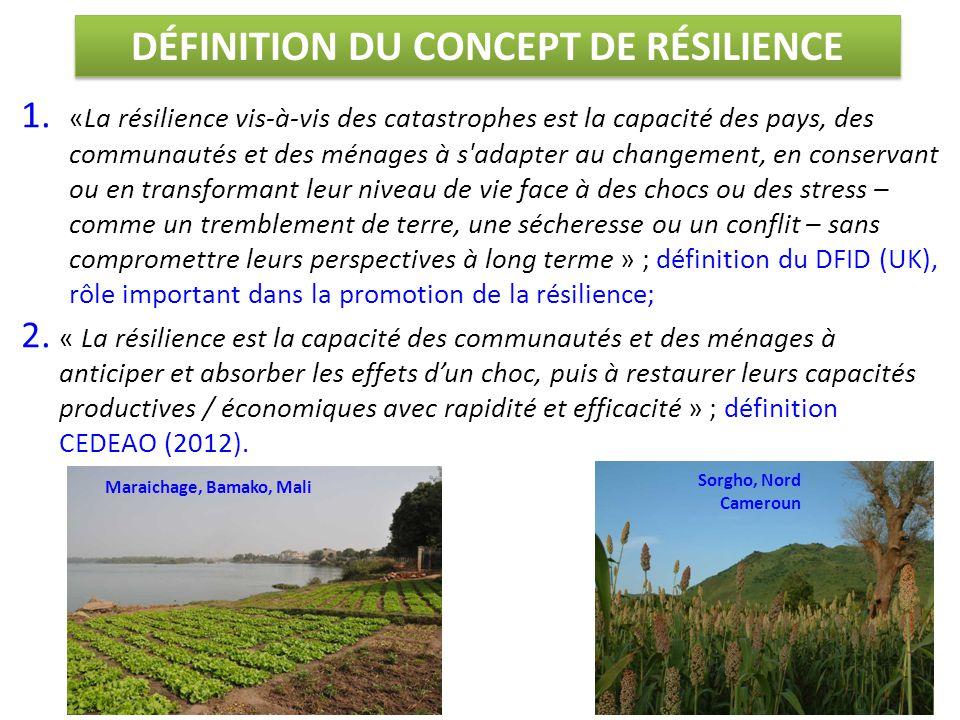 1. «La résilience vis-à-vis des catastrophes est la capacité des pays, des communautés et des ménages à s'adapter au changement, en conservant ou en t