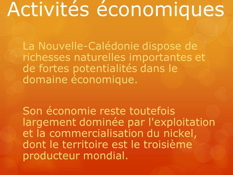 Activités économiques La Nouvelle-Calédonie dispose de richesses naturelles importantes et de fortes potentialités dans le domaine économique. Son éco