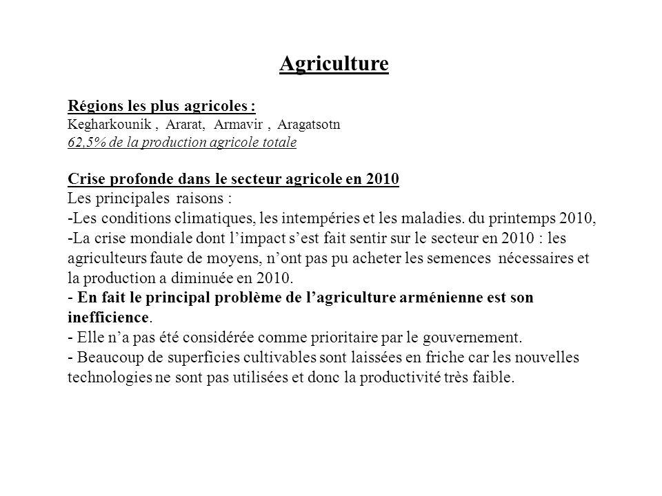 Agriculture Régions les plus agricoles : Kegharkounik, Ararat, Armavir, Aragatsotn 62,5% de la production agricole totale Crise profonde dans le secte