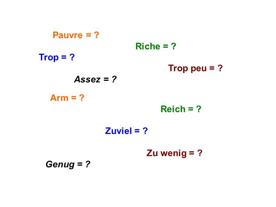 Pauvre = ? Riche = ? Trop = ? Trop peu = ? Assez = ? Arm = ? Reich = ? Zuviel = ? Zu wenig = ? Genug = ?