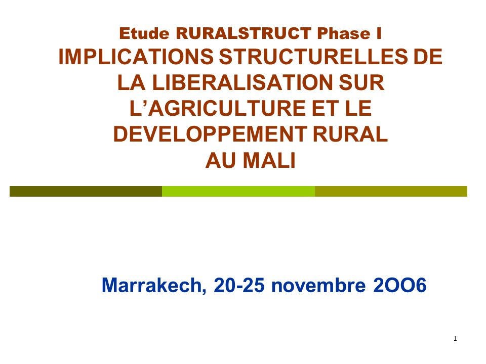 1 Etude RURALSTRUCT Phase I IMPLICATIONS STRUCTURELLES DE LA LIBERALISATION SUR L'AGRICULTURE ET LE DEVELOPPEMENT RURAL AU MALI Marrakech, 20-25 novembre 2OO6