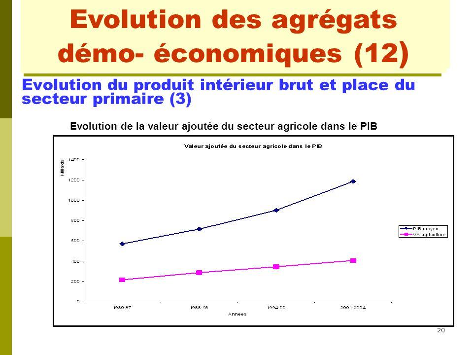 20 Evolution des agrégats démo- économiques(2) Evolution du produit intérieur brut et place du secteur primaire (3) Evolution de la valeur ajoutée du