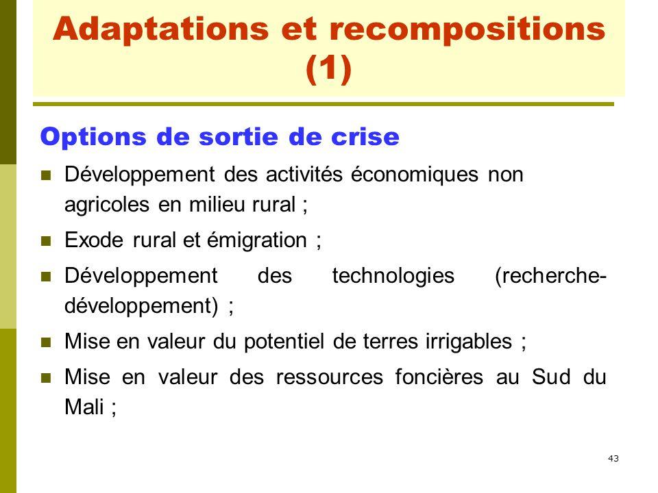 43 Adaptations et recompositions (1) Options de sortie de crise Développement des activités économiques non agricoles en milieu rural ; Exode rural et