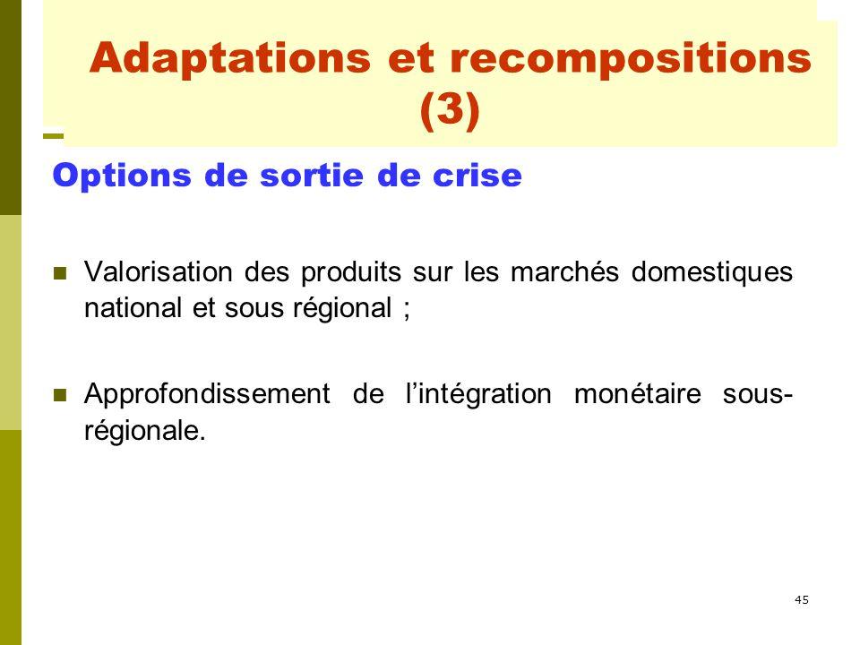 45 Adaptations et recompositions Options de sortie de crise Valorisation des produits sur les marchés domestiques national et sous régional ; Approfon