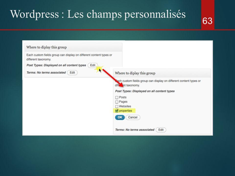 63 Wordpress : Les champs personnalisés